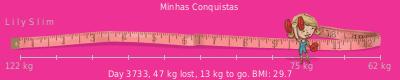 LilySlim Weight loss (Gtj1)