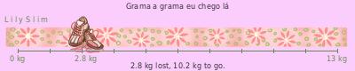 LilySlim Weight loss (MDPz)