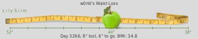 LilySlim Weight loss (OBD0)