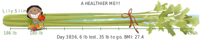 LilySlim Weight loss (SxE0)