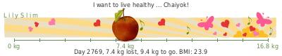 LilySlim Weight loss (VIAA)