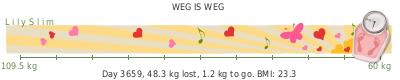 LilySlim Weight loss (Vn5J)