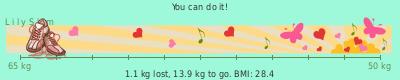 LilySlim Weight loss (lmYR)