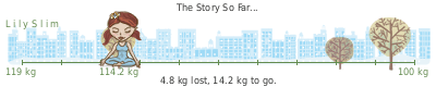 LilySlim Weight loss (t6lq)