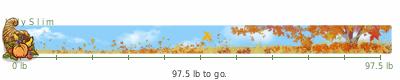 LilySlim Weight loss (z8ia)
